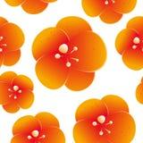 橙色花的无缝的样式 图库摄影