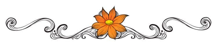 橙色花边界 库存照片
