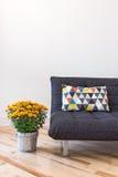 橙色菊花和沙发有明亮的坐垫的 免版税图库摄影