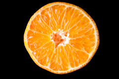 橙色被隔绝的蜜桔果子半切片  库存照片