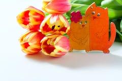 橙色郁金香和猫小猫爱心脏在白色背景的华伦泰浪漫史 免版税库存图片