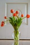 橙色郁金香花束 库存图片