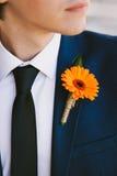橙色钮扣眼上插的花 库存图片