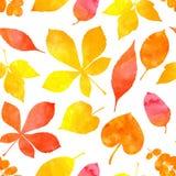 橙色水彩被绘的秋叶 模式无缝的向量 库存照片