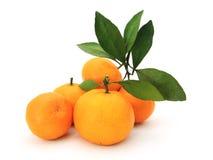 橙色 库存照片