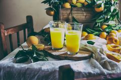 橙色 Haervest概念 橙汁,充分的箱子桔子结果实蚂蚁在桌上的橙树分支与亚麻布 图库摄影