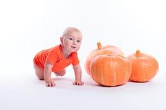 橙色T恤杉的婴孩在白色背景在pumpki旁边坐 免版税库存照片