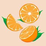橙黄的例证商标 免版税图库摄影
