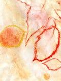 橙黄色树胶水彩画颜料 库存图片