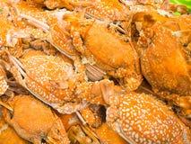 橙黄色螃蟹煮沸,海鲜 库存照片