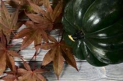 橡子南瓜和红色秋天在灰色木背景生叶 harv 免版税库存照片
