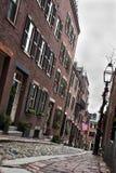 橡子波士顿st 免版税图库摄影