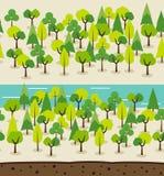 橡子秋天背景边界设计森林橡木阳光 向量例证
