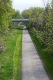 橡木在河沿公园的叶子足迹 库存图片
