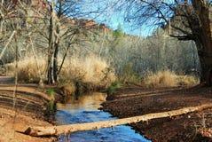 橡木小河一个动作缓慢分支在大教堂岩石附近的 在亚利桑那 库存图片