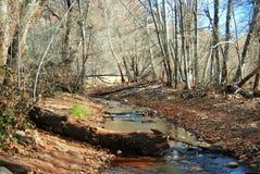 橡木小河分支在Sedona,亚利桑那附近的在冬天 免版税库存图片