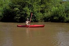 橡木小河的皮艇 库存照片