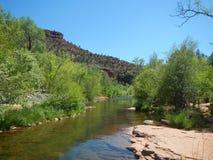 橡木小河 库存图片
