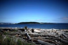 橡木港口华盛顿州美国 免版税库存照片