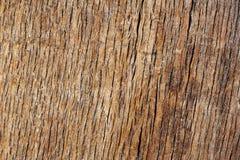 橡木纹理木头 免版税库存图片