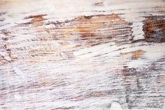 橡木纹理 免版税库存图片