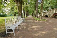 橡木胡同在凯瑟琳公园 Tsarskoe Selo,普希金镇  库存图片