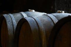 橡木葡萄酒桶在有柔光的葡萄酒库里 库存图片