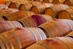 橡木葡萄酒桶在celar的酿酒厂 库存图片