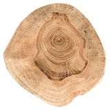 橡树切片纹理 与每年ri的不规则形状木平板 图库摄影