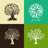 橡树剪影集合 免版税库存图片