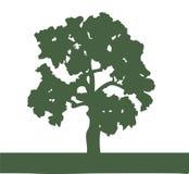 橡树的剪影 向量例证