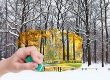 橡皮擦删掉秋天,并且冬天森林出现 库存照片