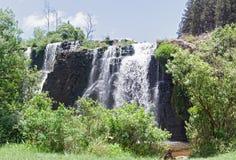 橡皮防水布橡皮防水布河的森林秋天sabie,南非北部的  库存图片