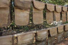 橡胶在其中一个覆盖干燥缅甸,亚洲村庄中  免版税库存照片