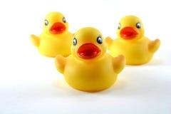 橡胶的鸭子 免版税图库摄影