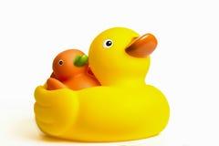 橡胶鸭子 免版税图库摄影