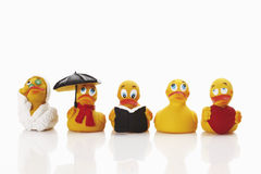 橡胶鸭子 免版税库存照片