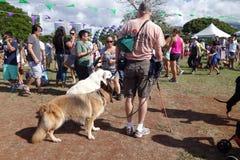 檀香山宠物步行2014年,人们和狗探索摊在丙氨酸Moa 免版税库存图片