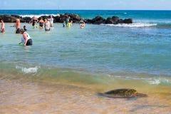 檀香山,美国- 2014年8月, 14 -人们获得乐趣在夏威夷海滩 图库摄影