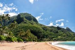檀香山,美国- 2014年8月, 14 -人们获得乐趣在夏威夷海滩 库存照片