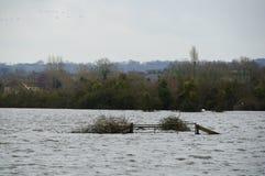 2014次英国洪水Burrowbridge 库存照片