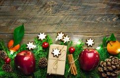 欢乐五颜六色的植物的圣诞节构成 新鲜的绿色在工艺纸的杜松红色苹果杉木锥体中看不中用的物品礼物盒 库存图片