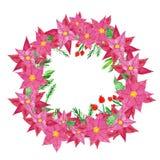 欢乐圣诞节和新年在门的冬天花圈与红色一品红花、霍莉莓果和杉木锥体 Watercol 库存例证