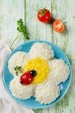 欢乐沙拉形状的春黄菊 免版税图库摄影