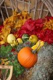 欢乐的秋天 图库摄影