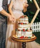 欢乐蛋糕三排新鲜水果庆祝 库存图片