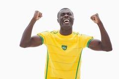 欢呼的巴西足球迷以黄色 库存照片