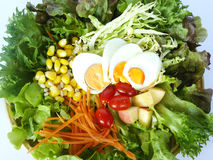 欢欣沙拉的菜 免版税库存图片