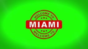 欢迎光临迈阿密签署了盖印文本木邮票动画 向量例证