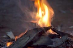 欢迎到国家营火, Wilpena磅手段, SA,澳大利亚 图库摄影
